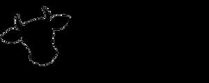 WTB Logo Rectangulaire.png