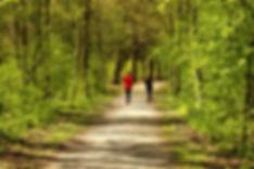 jogging-forest-trail.jpeg