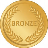 SSL-Secure-Web-Hosting-Bronze.jpg