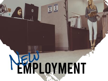New Employment Standards resources