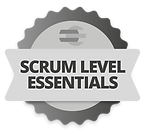 Scrum Level Logo.png