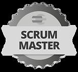 Scrum Master Logo.png