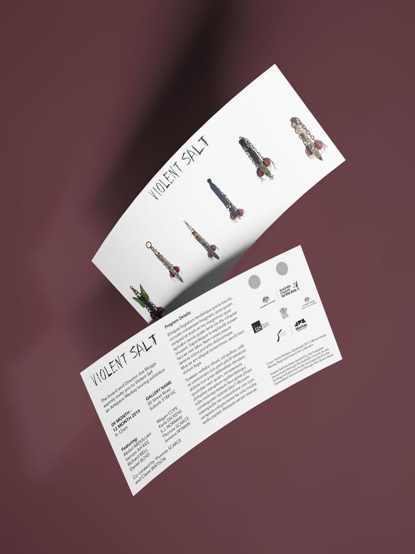 VS_Flying_Leaflet_Mockup_3.jpg