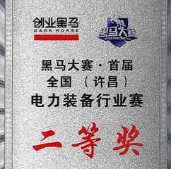 National Power Industry Award