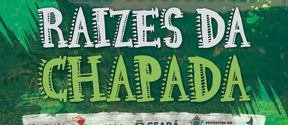 Projeto Corporativo Raízes da Chapada