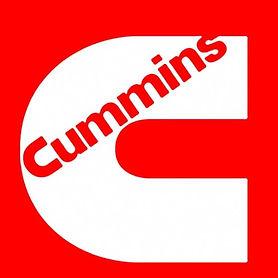 купить топливную аппратуру фирмы Cummins каминс