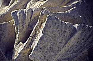 GALACTICA Detail
