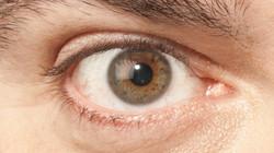 Krikos-ojo-1000x562