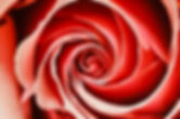 IMG_E0585[1].JPG