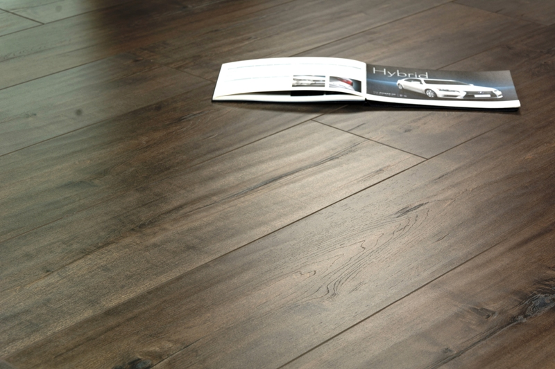 Maple Giza - Laminate