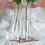 Thumbnail: Clear Test Tube Vases