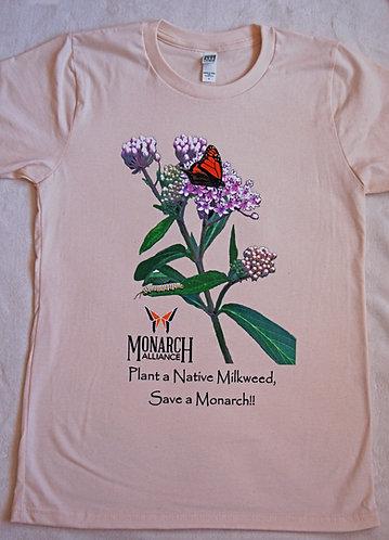 Swamp Milkweed (TMA) - Natural