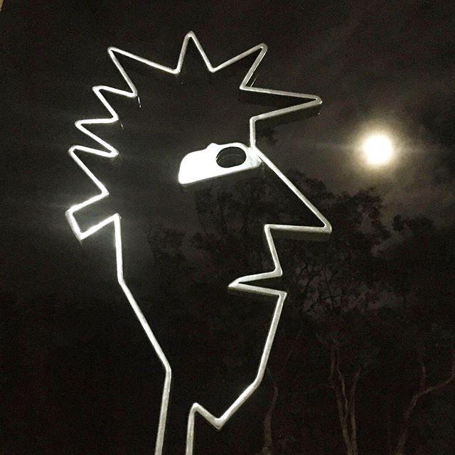 Spike in Moonlight