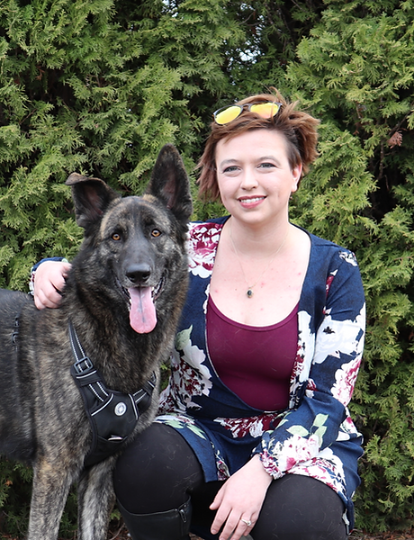 Woman caring for a large dog - Professional pet sitter