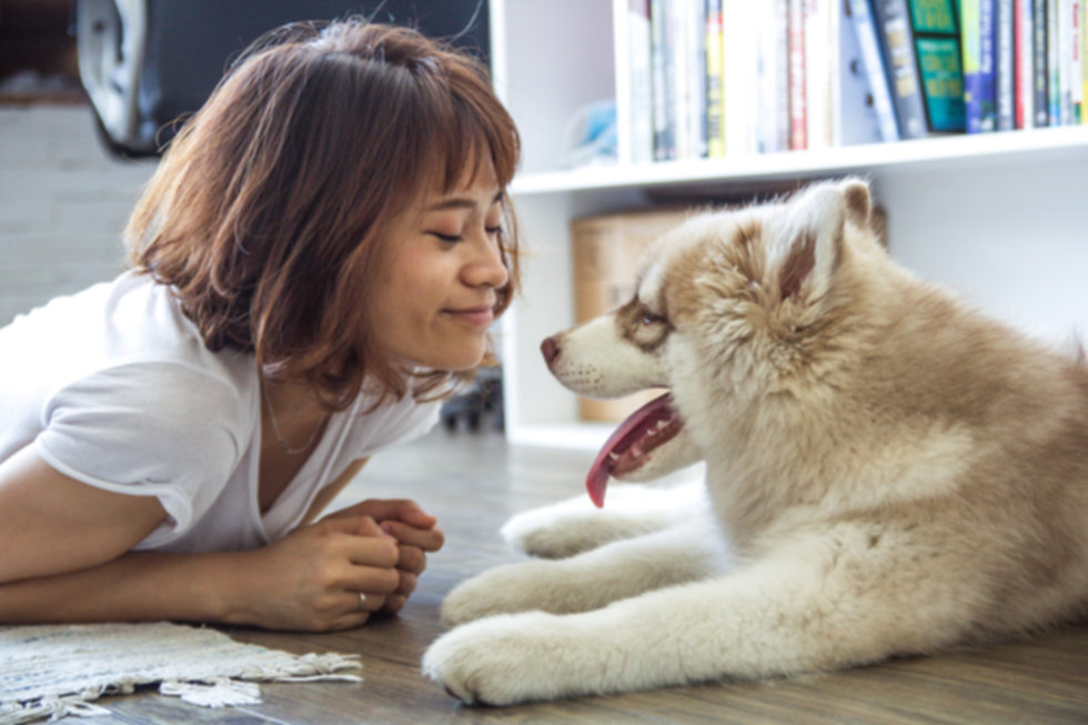 women comunicating to her puppy