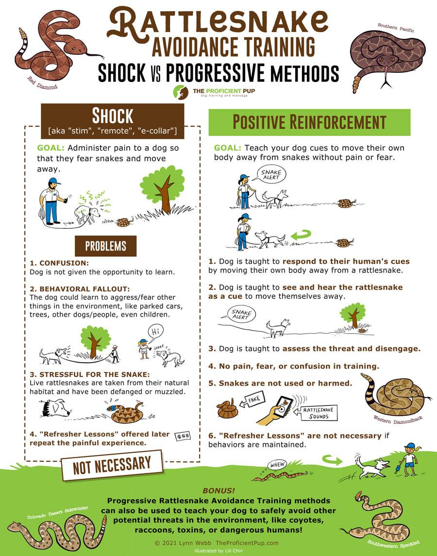 Shock Collar training vs Progressive dog training method to teaching avoidance of deadly wildlife.
