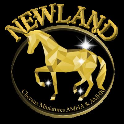 Newlandlogo_smalltransparent.png
