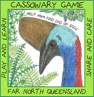 Cassowary educational board game Mission Beach