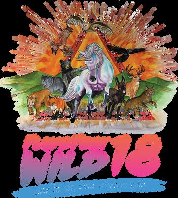 Floyd Fest Wild 18