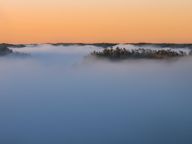 Red River Gorge Mist