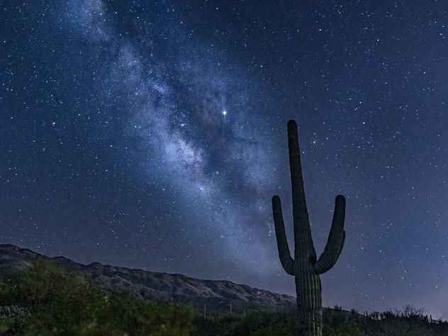 Saguaro Milky Way