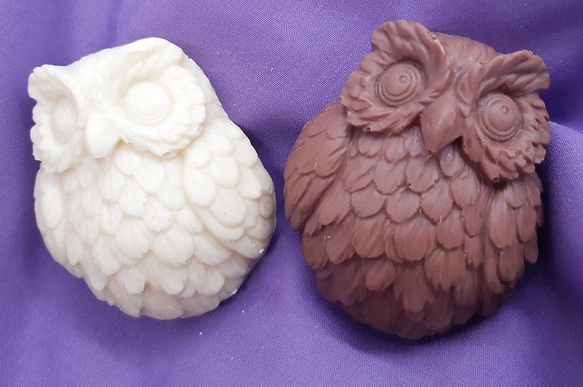 Millie & Harry Chocolate Owls