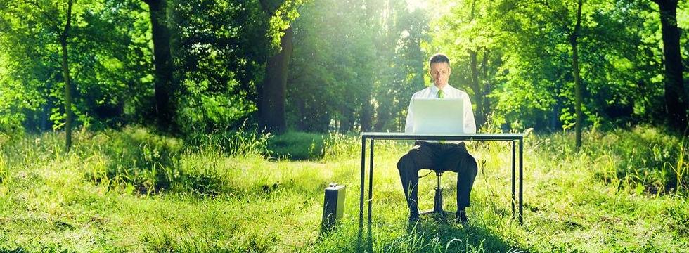 Businessman-in-Woods-1024x512_edited.jpg