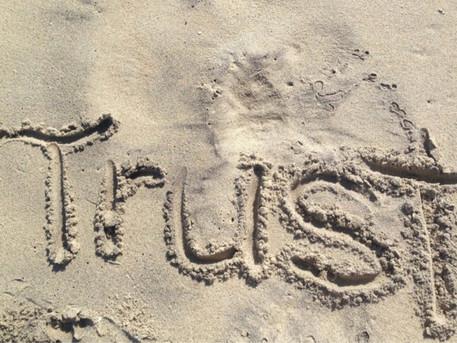 FIRST TO TRUST by Emmy Joy Shepherd