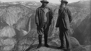 John Muir Quotes & Pictures