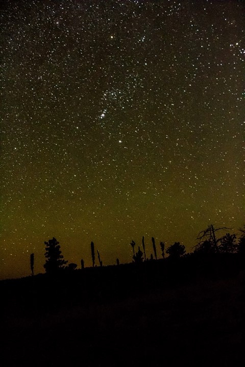 Facebook - Stars from the hilltops at Wind Cave National Park in the Black Hills