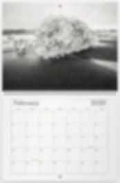 Screen Shot 2019-11-17 at 2.09.19 PM.png