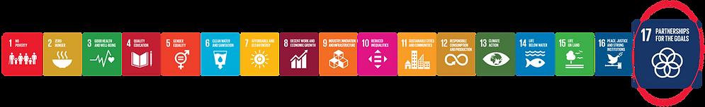 SDG logo high resolution # 17.png