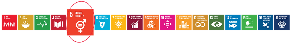 SDG logo high resolution # 5.png