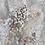 Thumbnail: Grey Matter