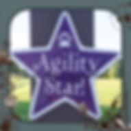 Agility Star.jpg