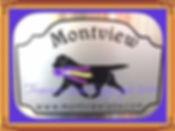 Montview Labs.jpg