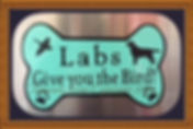 Teal bone Labs give you the bird.jpg
