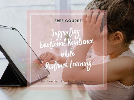 Supporting Emotional Resilience while Distance Learning