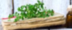 shutterstock_707494507 (1).jpg