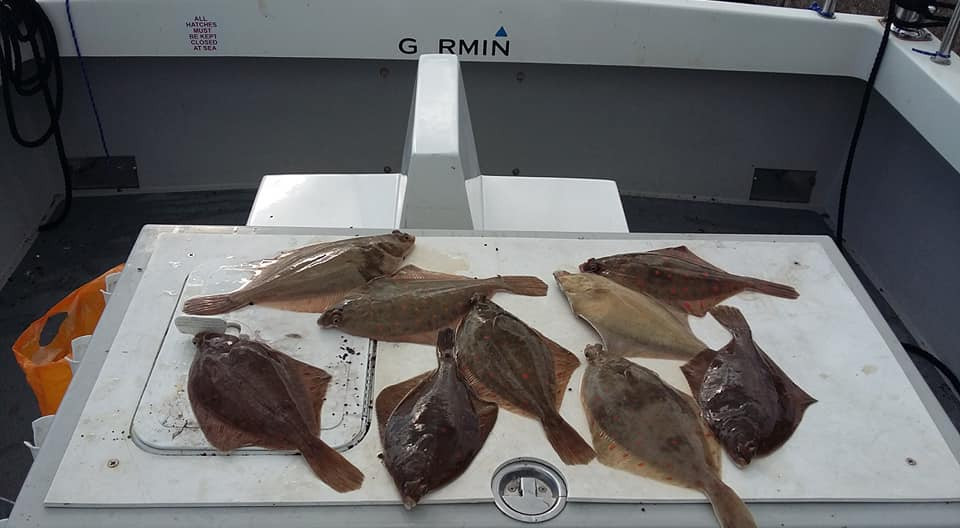 Yesterdays remaining catch after customers had had their pickings