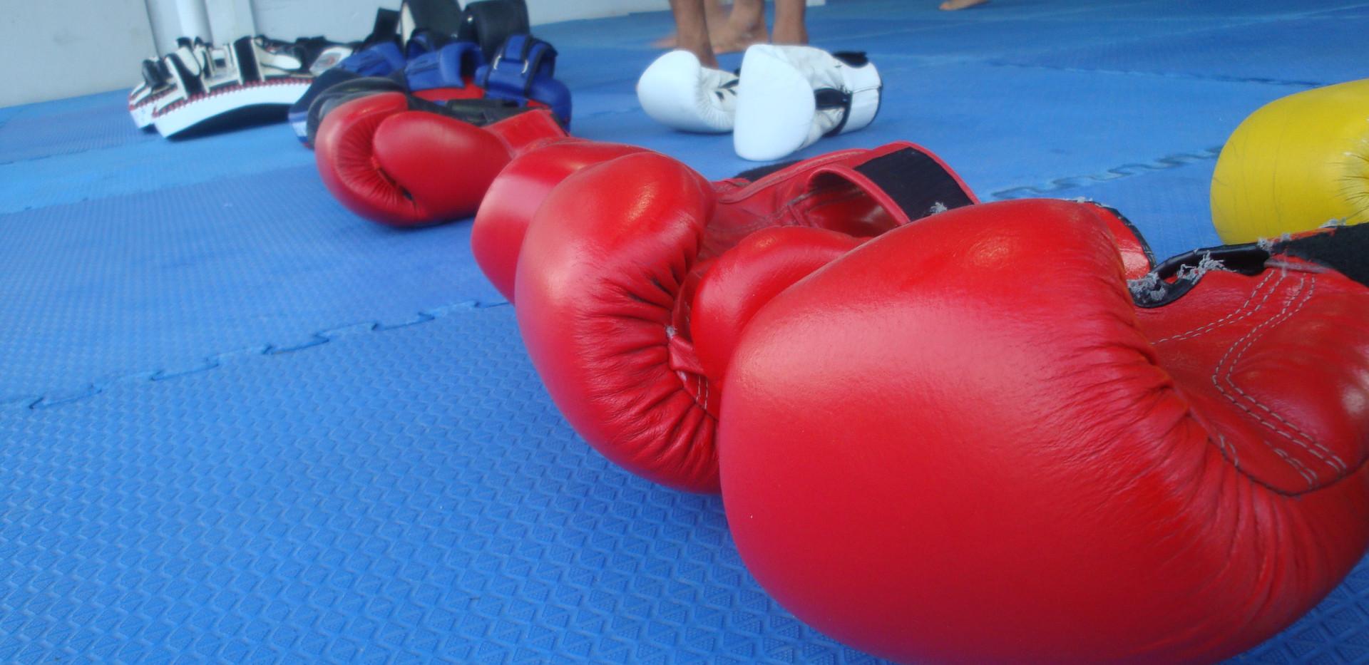 Boxign glove