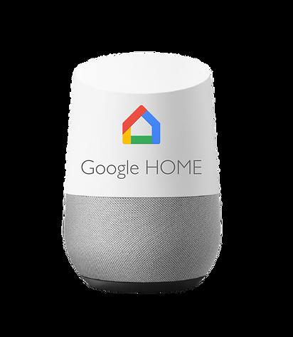 google home completo GRUPO CUEVAS VIDEOP