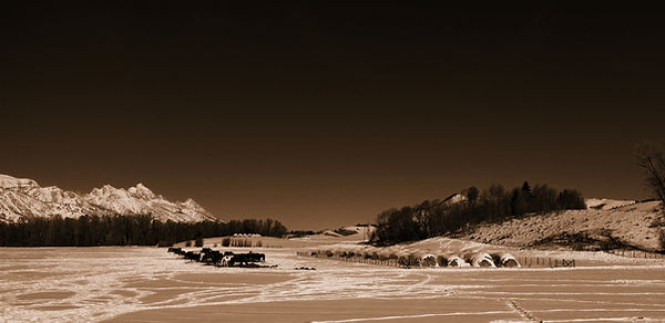 tetons-on-left-SEPIA.jpg