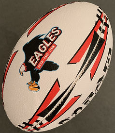 Ballon%252520Eagles_edited_edited_edited
