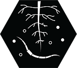 healthy soil icon (1).png
