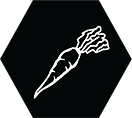 carrot icon (1).png