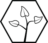 seedling icon (1).png