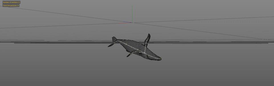 Whale_OGL
