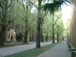 名古屋学院大学でのプチ講演会