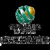 新東安 logo-min.png